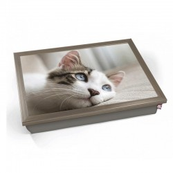 Cat lap Tray (Chrome)